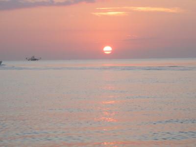 Studying the sunrise
